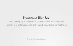 newsletter signup banner